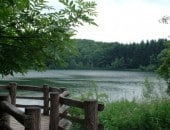 Am Holzmaar bei Gillenfeld