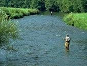 Angler in der Kyll