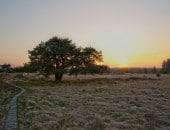 Das Hohe Venn im Spätsommer mit einem wunderschönen Sonnenuntergang