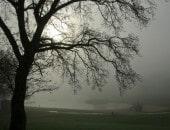 Diese Nebelstimmung habe ich im April 2012, früh Morgens in Rurberg eingefangen.