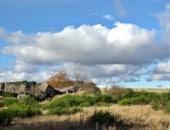 Ehemaliger Truppenübungsplatz Vogelsang-Wollseifen, heute ein herrliches Land zum durchwandern