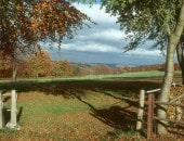 Eifellandschaft im Oktober