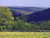 Frühlingshafte Eifel bei Rollersbroich