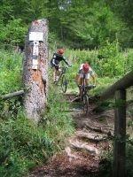 Geführte Mountainbike-Touren in der Vulkaneifel