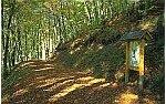 Gewässerlehrpfad Echtersbachtal