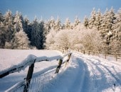 Im Winter bei Wolfgarten<br />