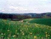 Landschaft im Prümtal