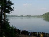 Naturschutzsee in Zülpich