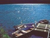 Sommerlicher See mit Ruderbooten