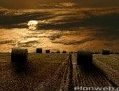 Sonnenaufgang über einem Stoppelfeld bei Mühlheim-Wichterich