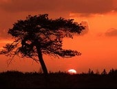 Sonnenuntergang im Hohen Venn<br />