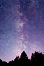 Sternenwanderung mit Halbmond (Astronomie)