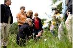 Wildpflanzenführung und Picknick