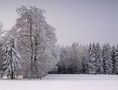 Winterlandschaft am Jägerhaus