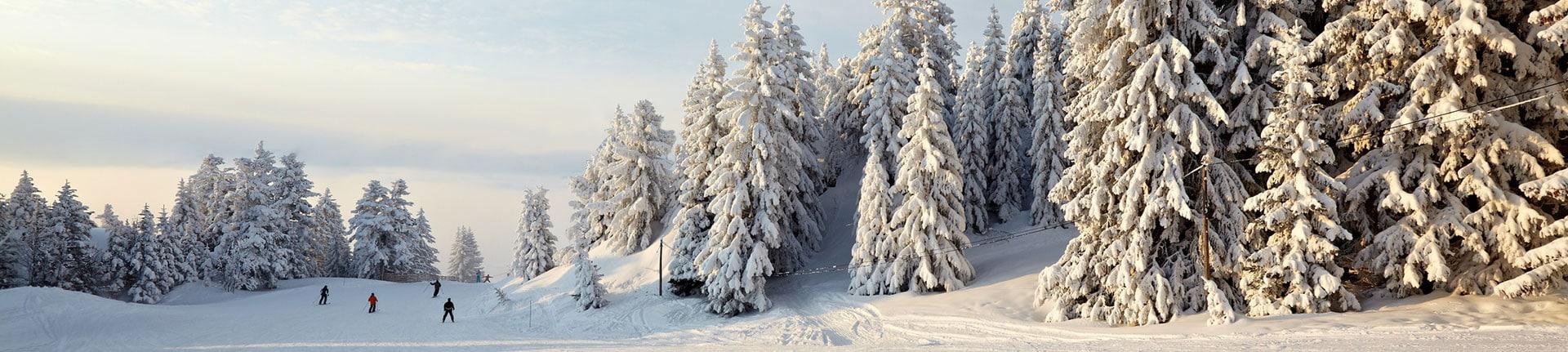 Wintersport in der Eifel