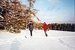 "Wintersportgebiet ""Michelsberg"""