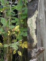 naturpfade - Natur- und Kulturerlebnis